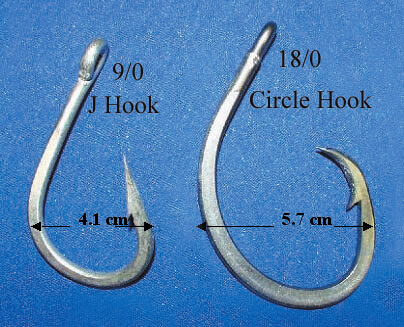J-Hooks compared with Circle hooks