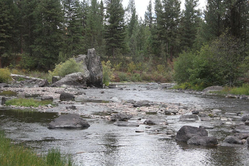 View of the Clearwater River