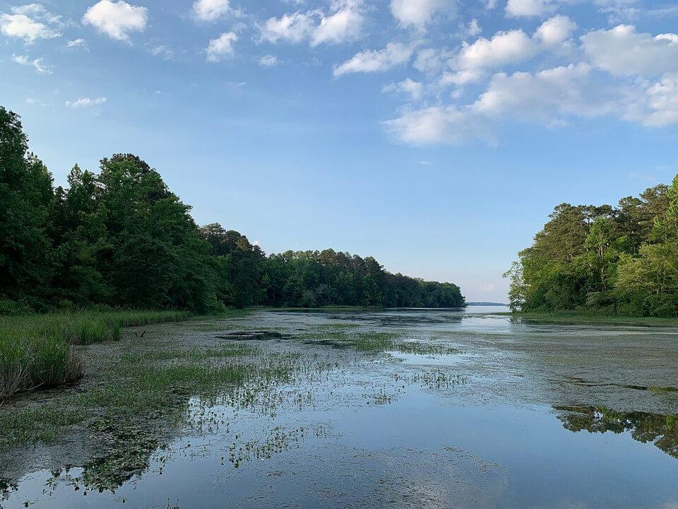 Viw of Lake Guntersville under blue skies