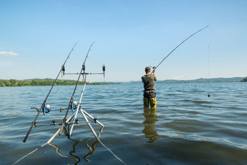 angler with rod and reel fishing carps in lake