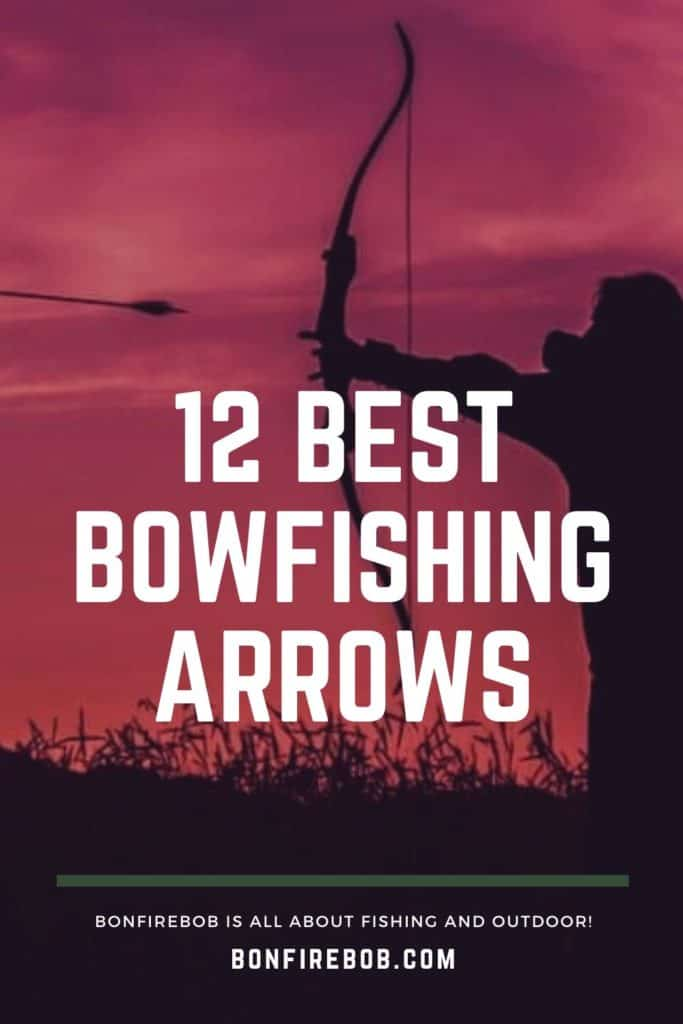 Best bowfishing arrows w. buying guide. For me the best bowfishing arrows doesn't have to be the most expensive. It's the one that matches YOUR needs. #fishwithbow #fishingcrossbow #bowfishinglights #bowfishingquotes #bowfishingdeck #bowfishing #fishingwithbow #fishingarrow #bowfishingarrow #bowfish #bowfishingboatideas #bowfishingboat #bowfishingdeck