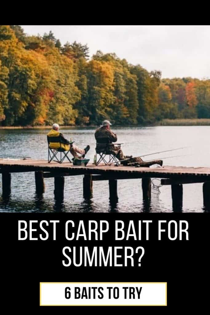 Best carp bait for summer. This is the baits I recommend you trying before anything else. And yes, corn is a great bait if you want to catch carp. #carpfishing #catchingcarp #carptips #findingcarp #carpbite #fishingtips #fishingbeginners #carpspawn #fishingforcarp #tipscarp #fishing