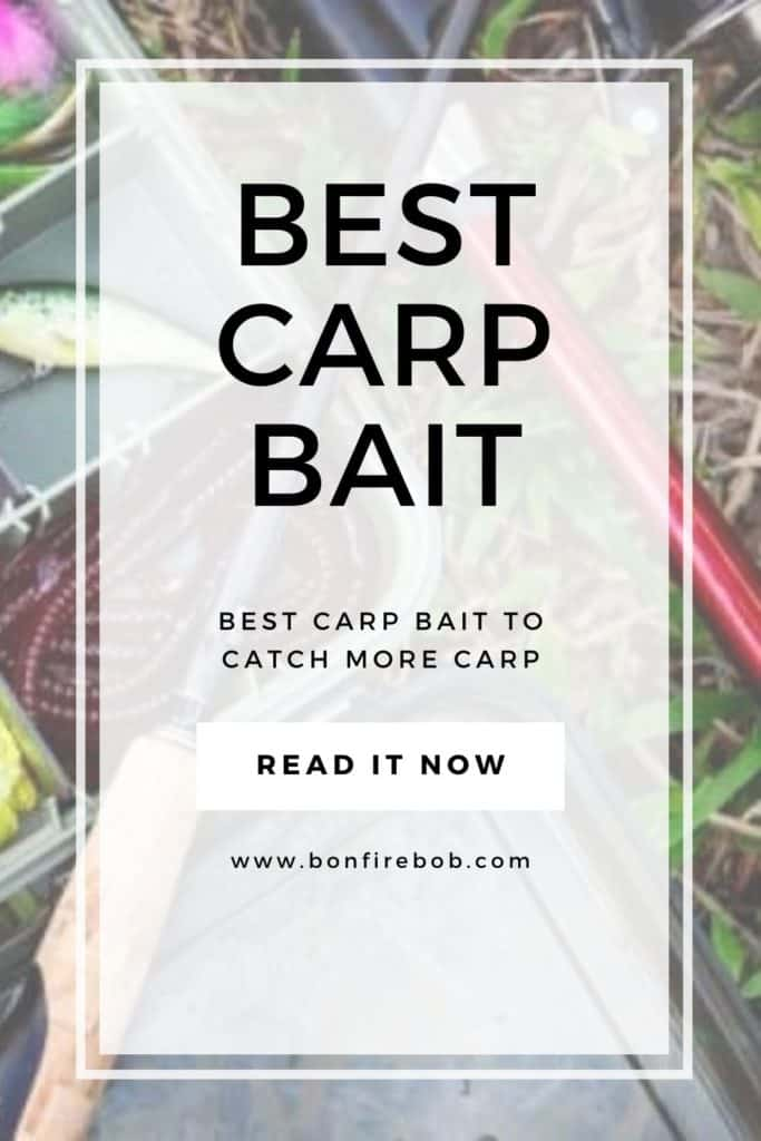 Best carp bait. What's the best carp bait you can currently use to catch more carp every time you grab the fishing poles and head to your favorite spot? Get my favorits here! #carpfish #carpbait #bestcarpbait #carpfishing #carpfish #fishingcarp #fishingforcarp #carpfishingbeginner #carptrick #carpfishingtrick #catchcarp #carpcatching #carpbaitbest #carpcorn #carpnightcrawlers #popupbait #earthwormbait #boiliesbait #fishinglure #floatingfishinglure