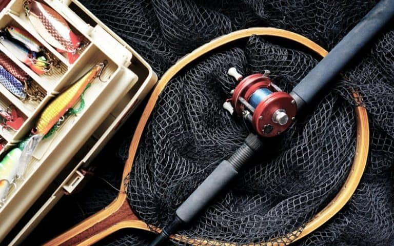 Best Ice Fishing Gear For Carp Fishing - My Picks