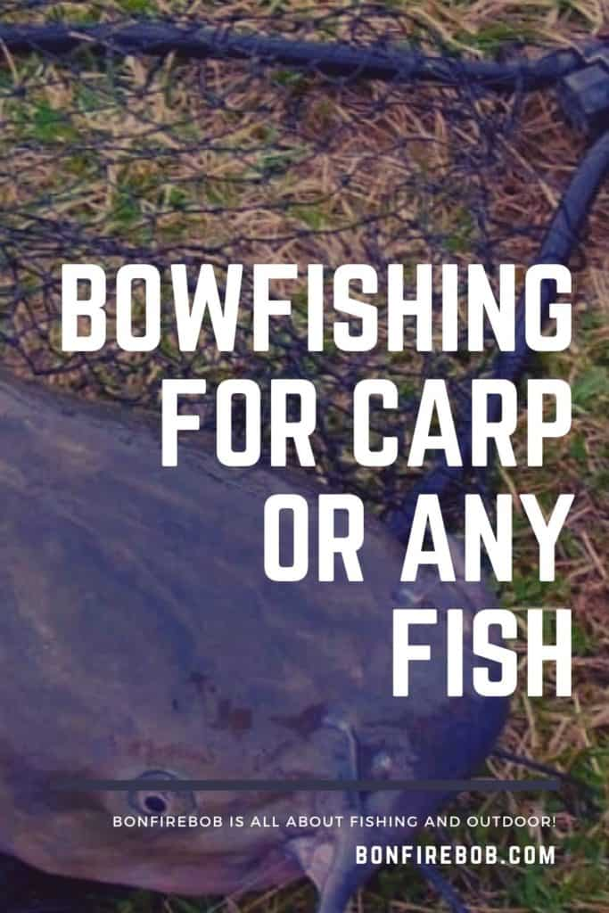 Bowfishing for carp or any fish. This is my ultimate guide on how to get started bowfishing for carp og any fish. Bowfishing is a must-try if you are into fishing. #fishingbeginners #carpspawn #carpbite #fishingtips #fishingforcarp #tipscarp #fishing #carpfishing #catchingcarp #carptips #findingcarp