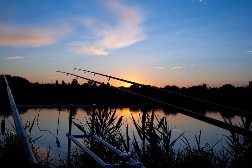 carp fishing at sunrise before night