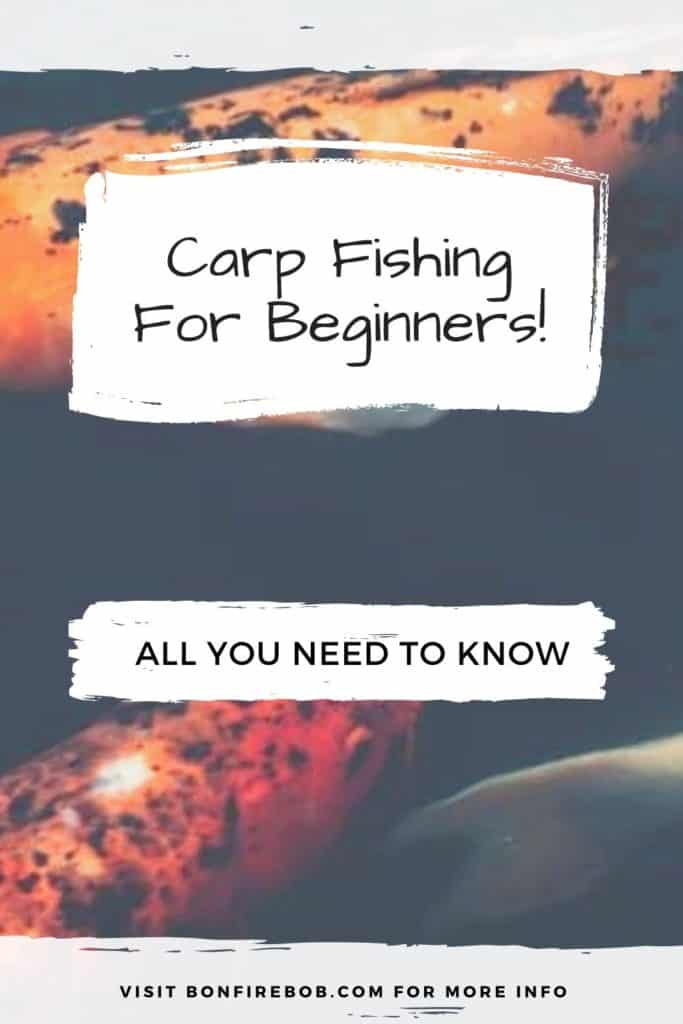 Carp fishing for beginners. Read my complete guide on how to get started catching carp with ease. The guide includes my best tips and tricks for catching carp. #fishingforcarp #tipscarp #fishing #carptips #findingcarp #fishingbeginners #carpspawn #carpbite #fishingtips #carpfishing #catchingcarp