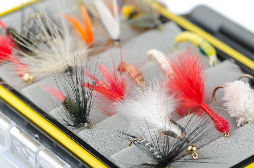 close up of fly fishing flies in fly box