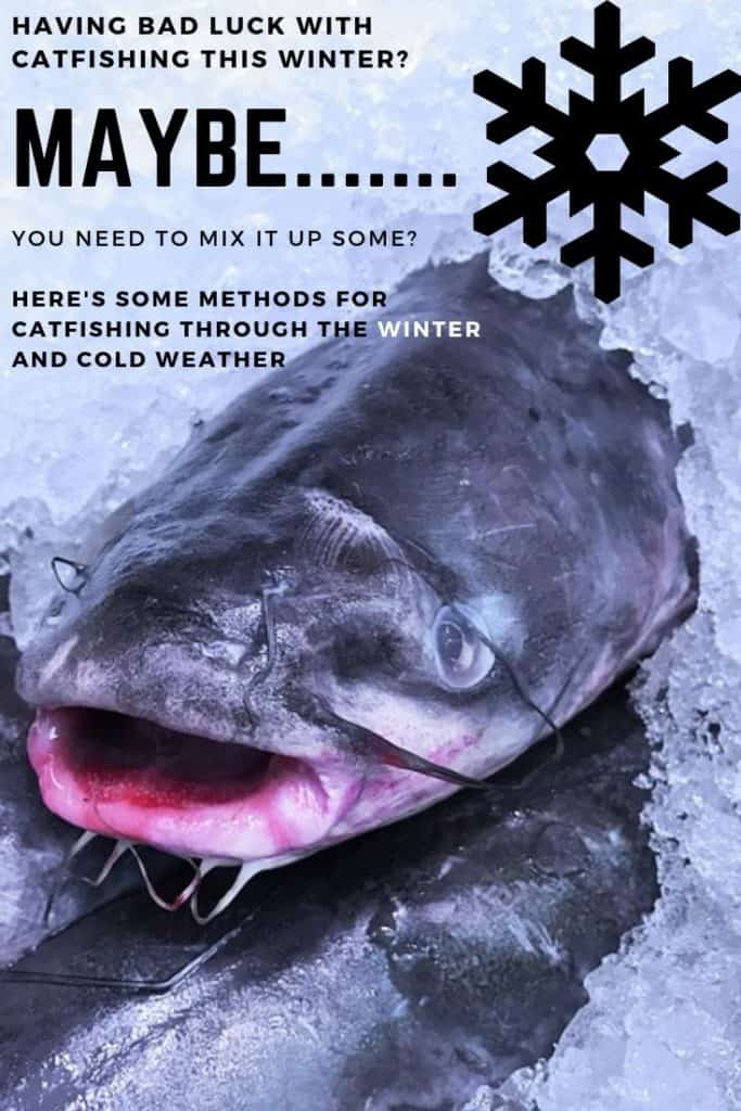 Do catfish like cold water? Having bad luck with catfishing this winter? Here's some methods for catfishing through the winter and cold weather. Be sure to check out all my others catfishing posts. #winterfishing #winterbait #wintercatfishing #wintercatfish #catfishing #catfishfishing #catfishtips #findingcatfish #fishingforcatfish #tipscatfish #fishing #fishingtips #fishingbeginners #fishingtricks #fishingcoldwater #coldwaterfishing #fishfinder #sonar #warmcatfish #catfishwarmwater