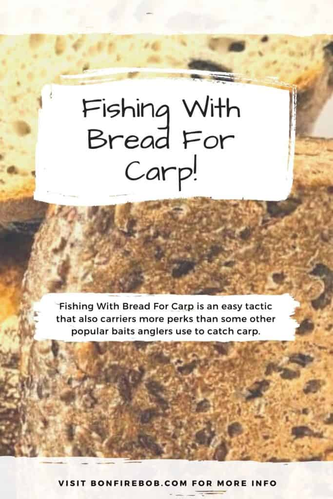 Fishing with bread for carp. Fishing With Bread For Carp is an easy tactic that also carriers more perks than some other popular baits anglers use to catch carp around the world. Read more here. #fishingforcarp #tipscarp #fishing #carpbite #fishingtips #carpfishing #catchingcarp #fishingbeginners #carpspawn #carptips #findingcarp