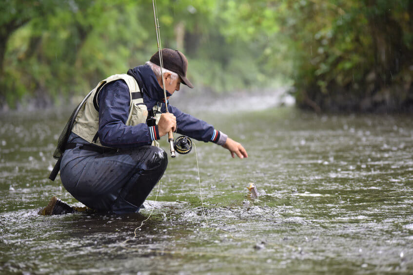 fly-fisherman catching trout in river under the rain
