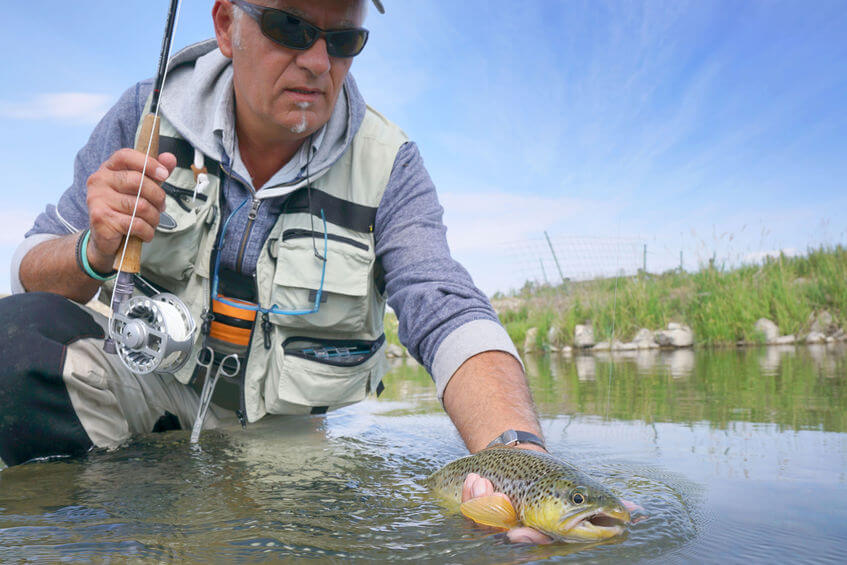 fly fisherman wearing fishing vest and catching brown trout