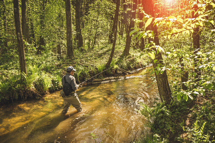 fly fisherman wearing wading pants and fly fishing in river