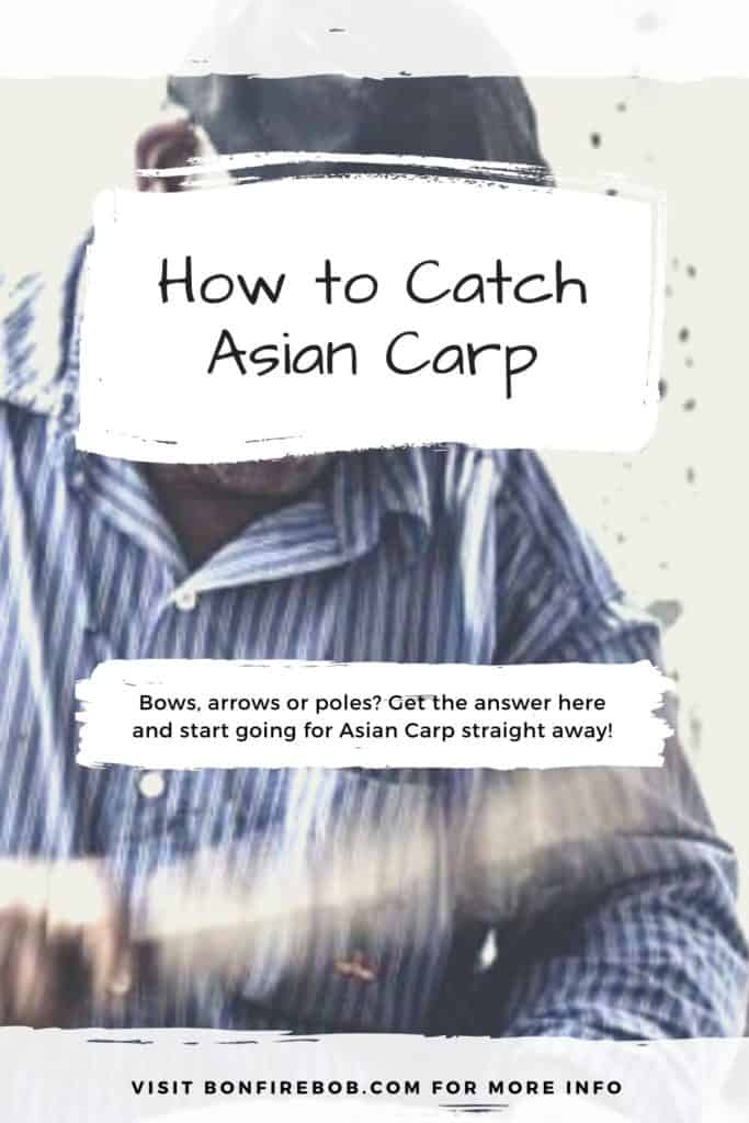 How to catch Asian Carp. Bows, arrows and poles? Catching Asian Carp is fairly easy but you need to know when, where and how. This in my guide on how to catch Asian Carp. #fishingbeginners #carpspawn #carptips #findingcarp #carpfishing #catchingcarp #carpbite #fishingtips #fishingforcarp #tipscarp #fishing