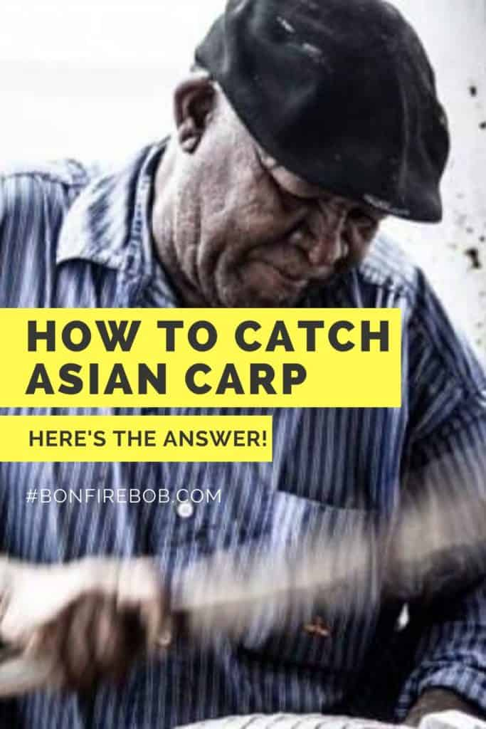 How to catch Asian Carp. Bows, arrows and poles? Catching Asian Carp is fairly easy but you need to know when, where and how. This in my guide on how to catch Asian Carp. #carpfishing #catchingcarp #carptips #findingcarp #fishingbeginners #carpspawn #carpbite #fishingtips #fishingforcarp #tipscarp #fishing