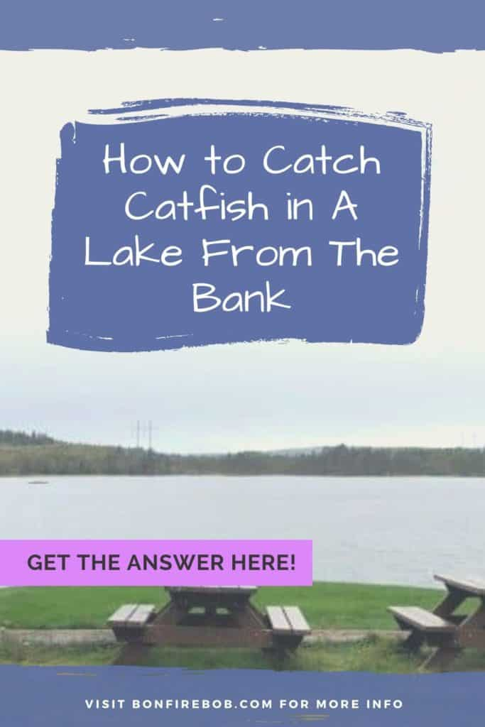 How to catch catfish in a lake from the bank. I love fishing for catfish in a lake from the bank - read how I do it here. #findingcatfish #tipscatfish #fishingforcatfish #catfishing #catfishfishing #catfishtips #fishingbeginners #catfishspawn #catfishing #catchingcatfish #catfishbite