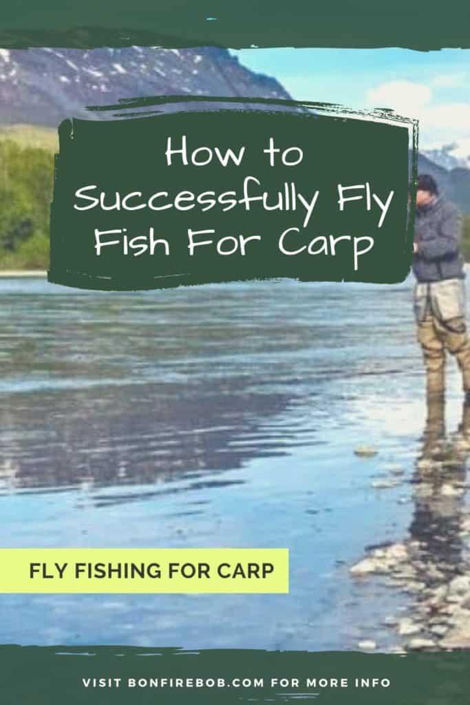 Fly fishing for carp. Learn all you need to know before going fly fishing for carp. #carpfishing #catchingcarp #carptips #findingcarp #fishingforcarp #tipscarp #fishing #fishingbeginners #carpspawn #carpbite #fishingtips