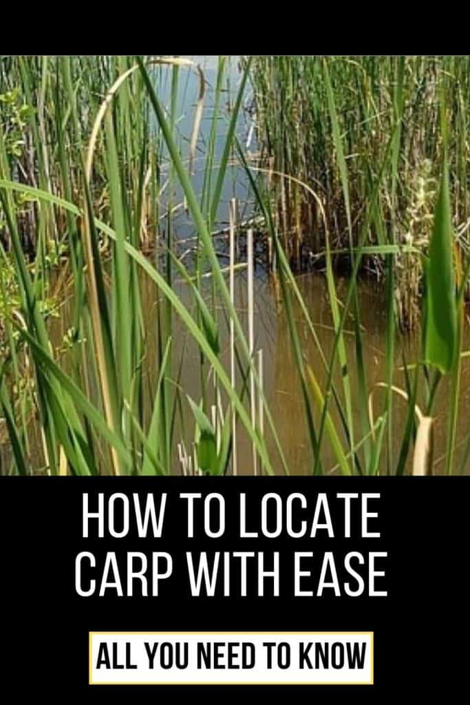 How to locate carp with ease. Locating carp is something I think all of us anglers are after to some degree. This is my best tips and tricks on how to locate carp with ease. #fishingbeginners #carpspawn #carpbite #fishingtips #carpfishing #catchingcarp #fishingforcarp #tipscarp #fishing #carptips #findingcarp