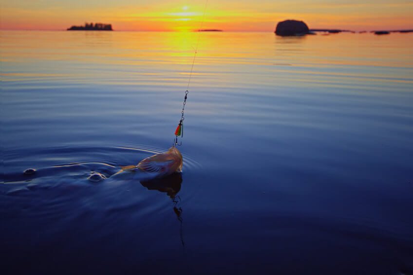 man catching fish in the evening with lure