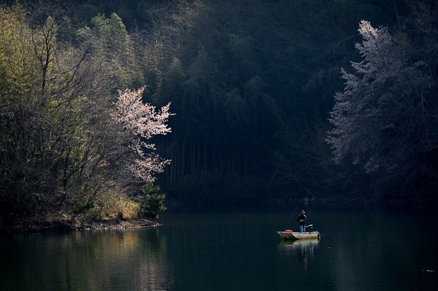 man fly fishing from boat in large lake