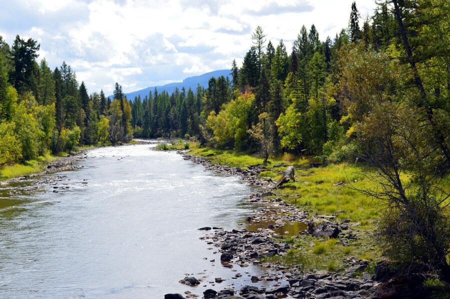 mountain river in Montana