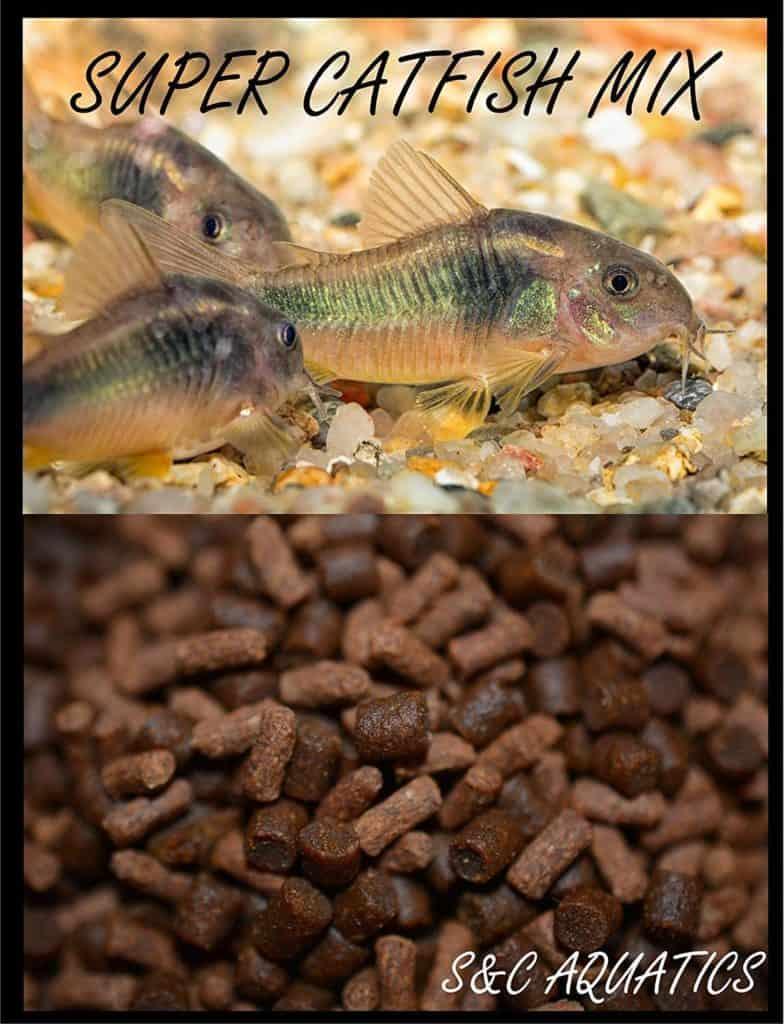 shrimp and krill mix as carp bait