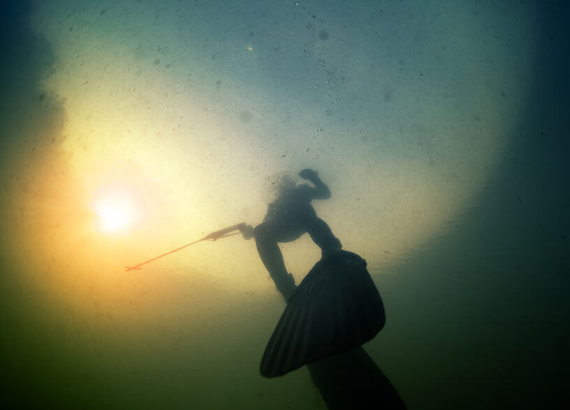 underwater shot of the hunter with speargun and long fins in a lake