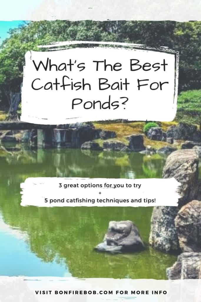 What is the best catfish bait for ponds? Here's my recommended bait for catching catfish in ponds. Easy to read. #findingcatfish #fishing #fishingtips #fishingbeginners #catfishspawn #catfishbite #catfishing #catchingcatfish #catfishing #catfishfishing #catfishtips
