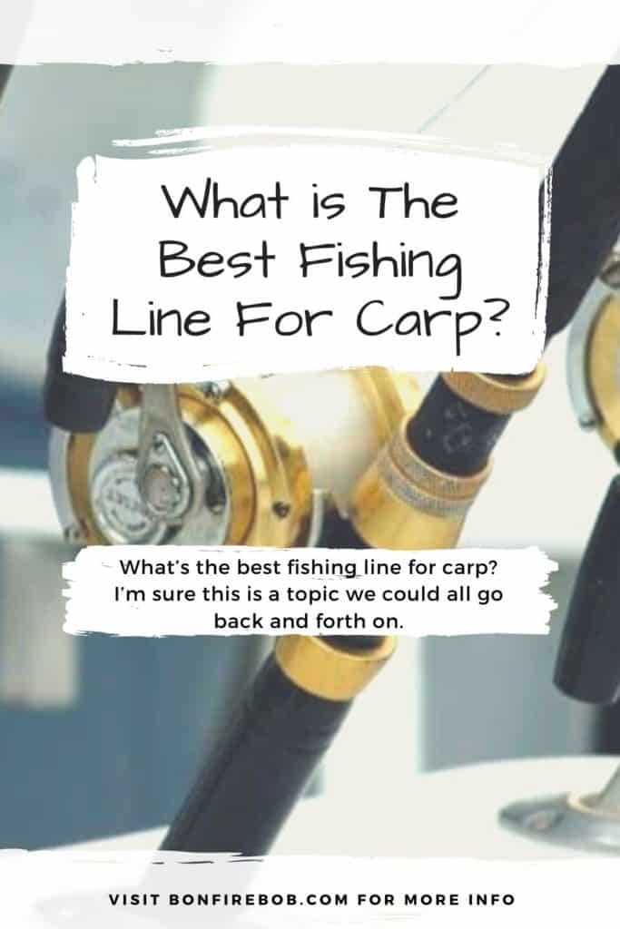 Best fishing line for carp. Be sure the find the perfect fishing line for carp after reading my guide on the best fishing lines for carp. #fishingforcarp #tipscarp #fishing #carptips #findingcarp #carpbite #fishingtips #carpfishing #catchingcarp #fishingbeginners #carpspawn