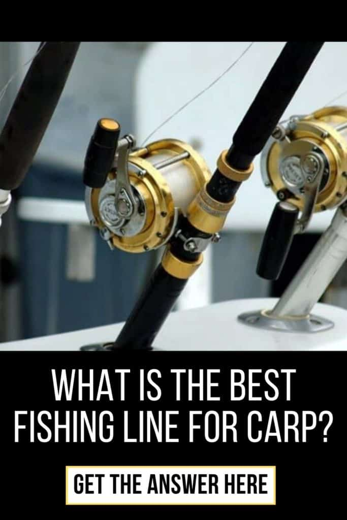 Best fishing line for carp. Be sure the find the perfect fishing line for carp after reading my guide on the best fishing lines for carp. #carpfishing #catchingcarp #carptips #findingcarp #fishingforcarp #tipscarp #fishing #fishingbeginners #carpspawn #carpbite #fishingtips
