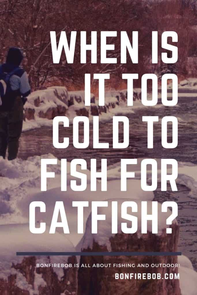 When is it too cold to fish for catfish? The fact is, that it's never is too cold to fish for catfish. Let me tell you why. #catfishing #catchingcatfish #tipscatfish #fishing #fishingtips #catfishbite #fishingbeginners #catfishspawn #catfishing #catfishfishing #catfishtips