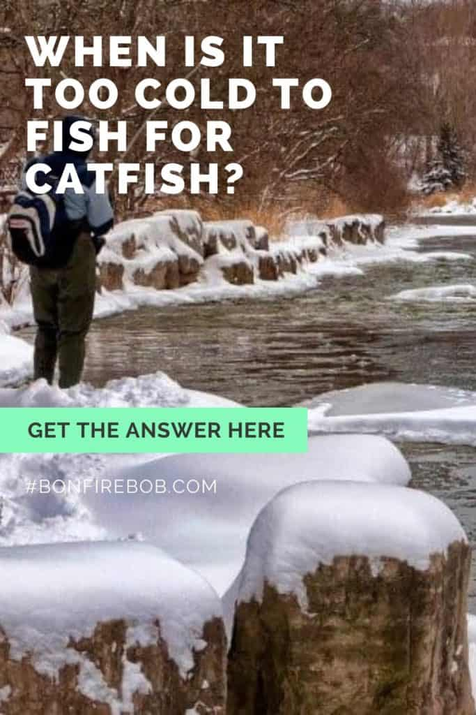 When is it too cold to fish for catfish? The fact is, that it's never is too cold to fish for catfish. Let me tell you why. #catfishing #catchingcatfish #catfishing #catfishfishing #catfishtips #fishingbeginners #catfishspawn #catfishbite #tipscatfish #fishing #fishingtips