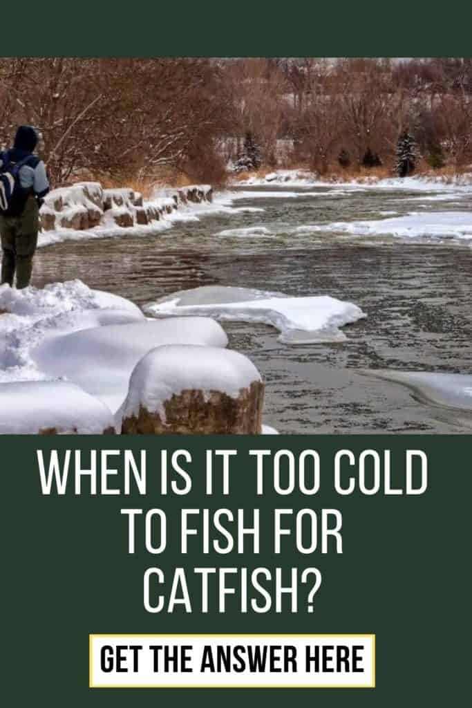 When is it too cold to fish for catfish? The fact is, that it's never is too cold to fish for catfish. Let me tell you why. #fishingbeginners #catfishspawn #catfishbite #findingcatfish #tipscatfish #fishingforcatfish #catfishing #catchingcatfish #catfishing #catfishfishing #catfishtips