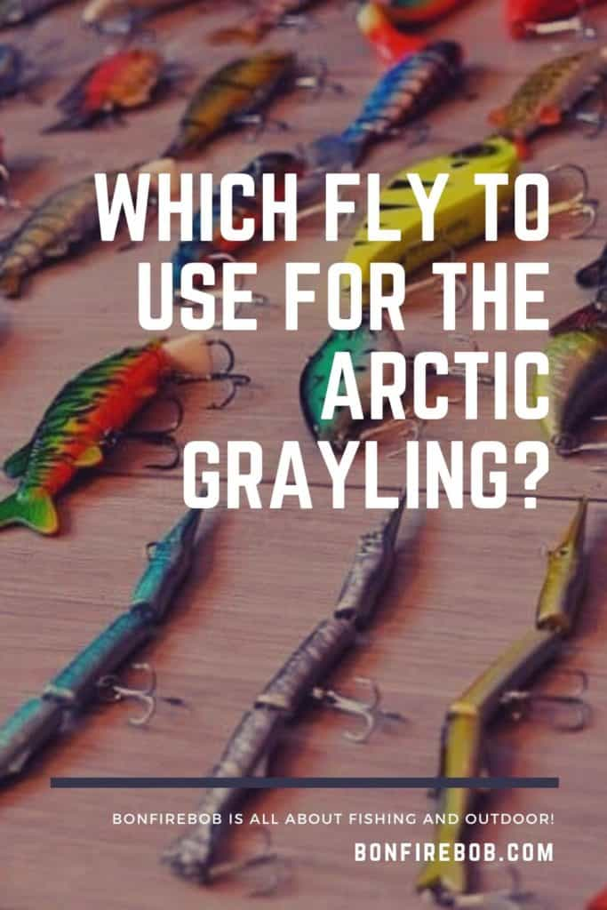 Flies for Arctic Grayling. Which fly to use for the Arctic Grayling? Let me tell you what flies I use for catching Arctic Grayling. #arcticgrayling #catchgrayling #catcharcticgraying #fishing #arcticgraylingfishing #arcticgraylingfish #graylingfish #graylingfishing #graylingflyfishing