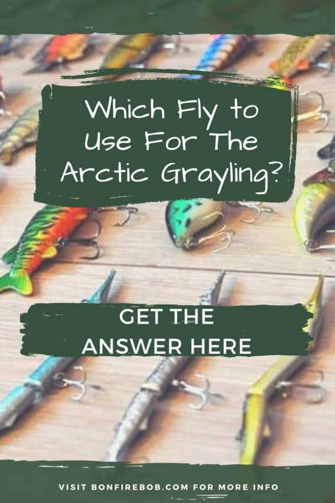 Flies for Arctic Grayling. Which fly to use for the Arctic Grayling? Let me tell you what flies I use for catching Arctic Grayling. #fishing #arcticgraylingfishing #arcticgraylingfish #graylingfish #arcticgrayling #graylingfishing #graylingflyfishing #catchgrayling #catcharcticgraying
